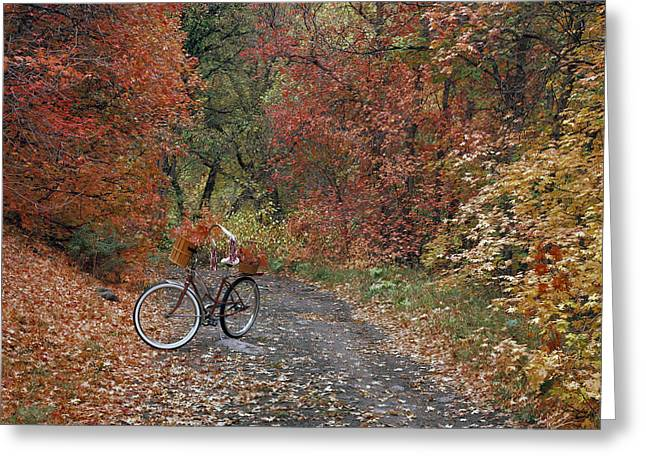 Old Bike In Autumn Greeting Card