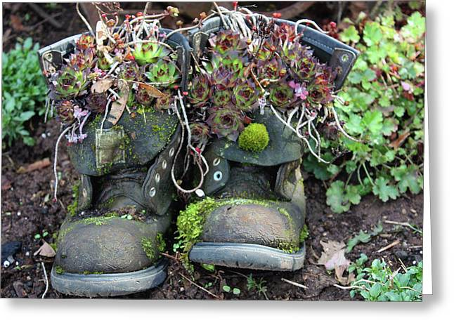 Old Boots New Purpose Greeting Card by Kami McKeon
