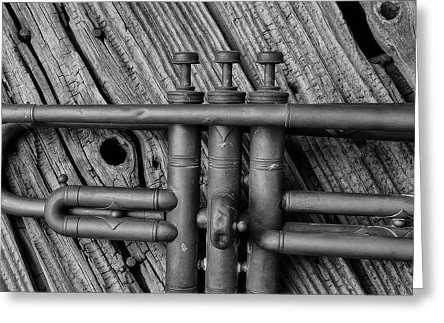 Old Brass Trumpet Greeting Card by Garry Gay