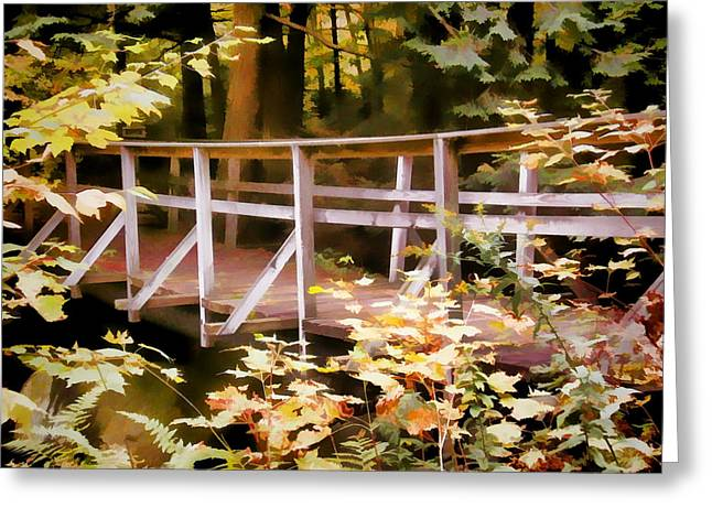 Old Bridge In The Woods In Color Greeting Card