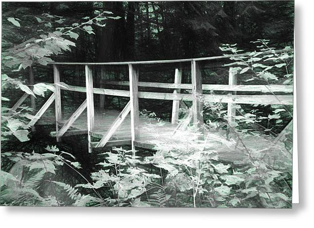 Old Bridge In The Woods Greeting Card