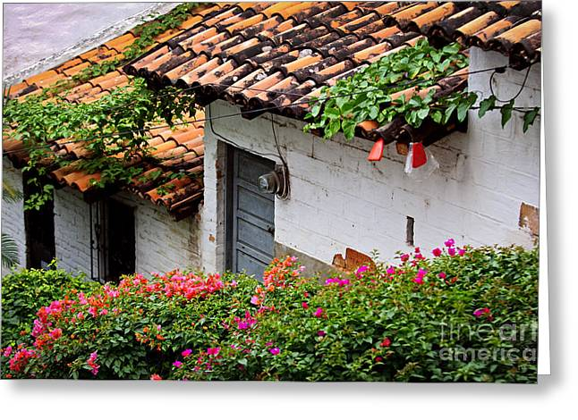 Rooftop Photographs Greeting Cards - Old buildings in Puerto Vallarta Mexico Greeting Card by Elena Elisseeva