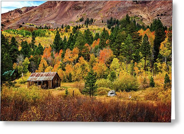 Greeting Card featuring the photograph Old Cabin In Hope Valley by John Hight