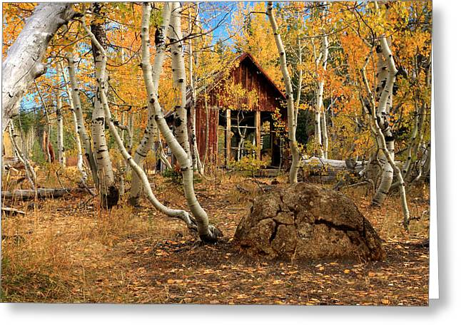 Old Cabin In The Aspens Greeting Card by James Eddy