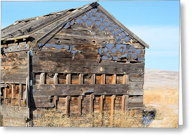 Old Cabin In The Desert Greeting Card