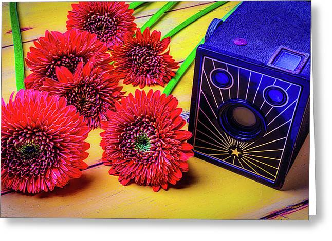 Old Camera And Dasies Greeting Card by Garry Gay