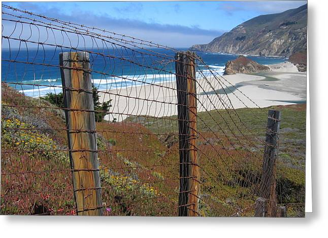 Greeting Card featuring the photograph Old Cattle Ranch In Big Sur by Don Struke