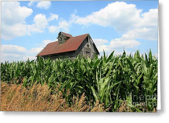 Old Corn Crib Greeting Card