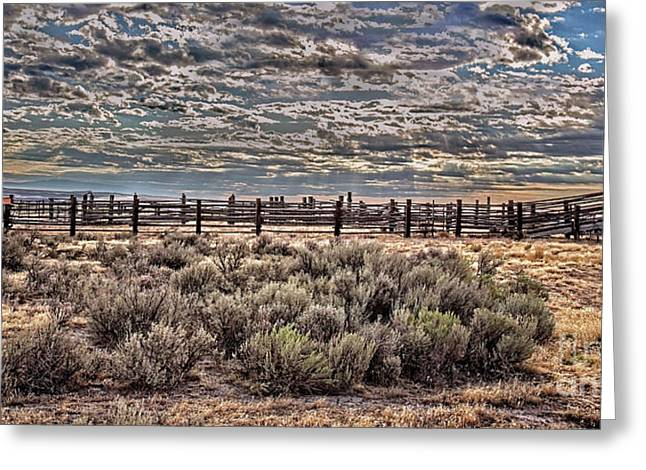 Old Corral Greeting Card by Robert Bales