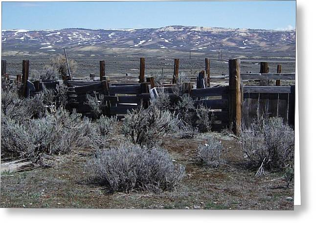 Old Corral Greeting Card by Susan Pedrini