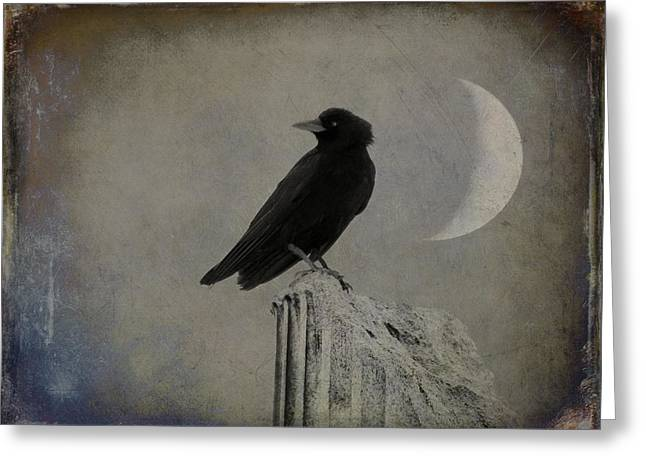 Old Crescent Moon And Crow Greeting Card by Gothicrow Images