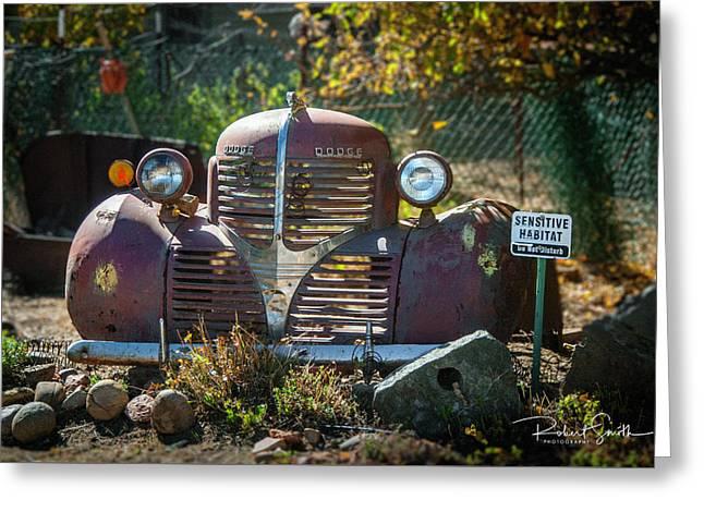 Old Dodge Rust Bucket Greeting Card