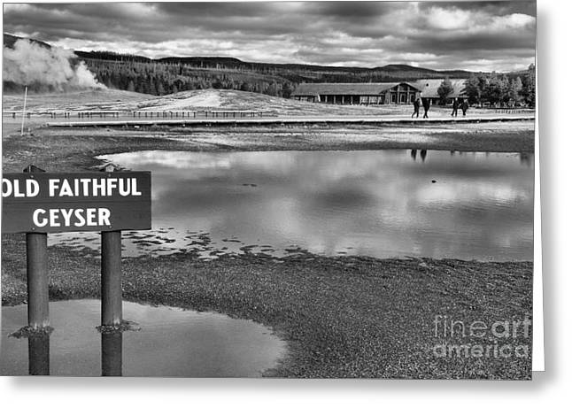 Old Faithful Landscape Black And White Greeting Card by Adam Jewell