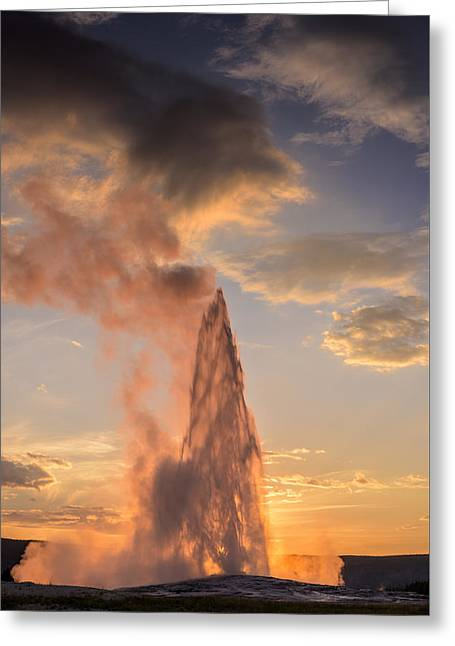 Old Faithful Yellowstone Greeting Card by Steve Gadomski