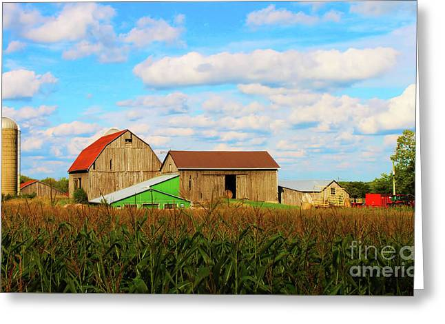 Old Family Farm Greeting Card by Anthony Djordjevic
