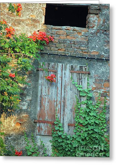 Old Farm Door Greeting Card