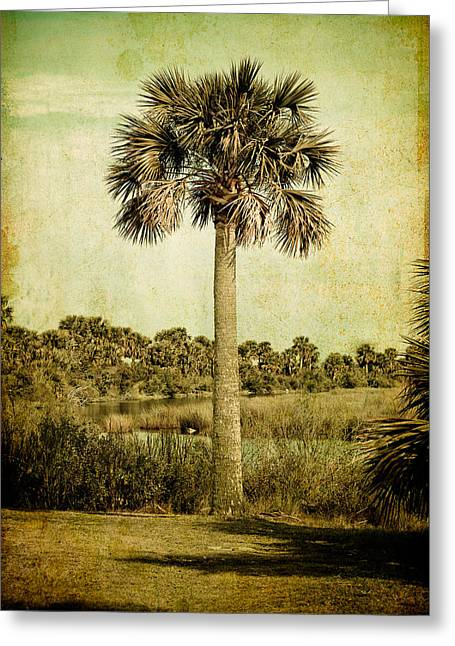 Old Florida Palm Greeting Card by Rich Leighton