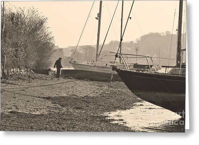 Old Friends At Mylor Bridge Greeting Card by Terri Waters