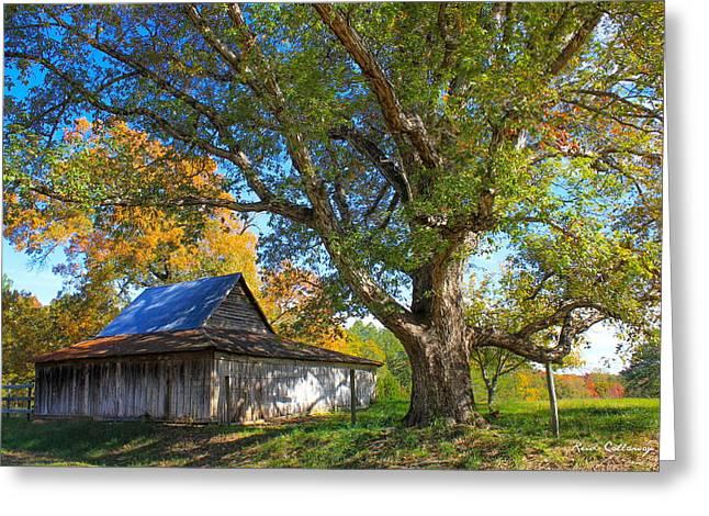Old Friends Rustic Barn Majestic Oak Tree Art Greeting Card by Reid Callaway
