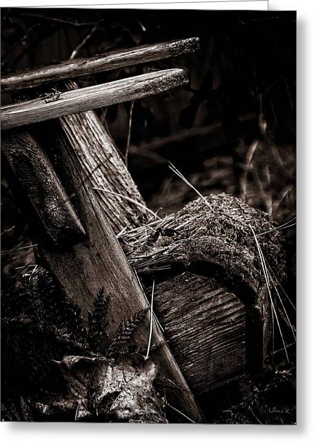 Old Garden Chair. Greeting Card