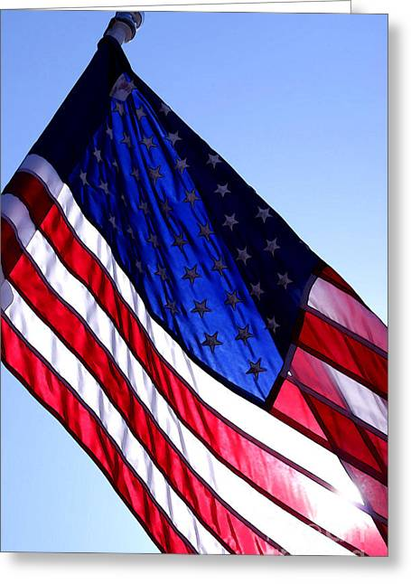Old Glory Greeting Card by Steve Augustin