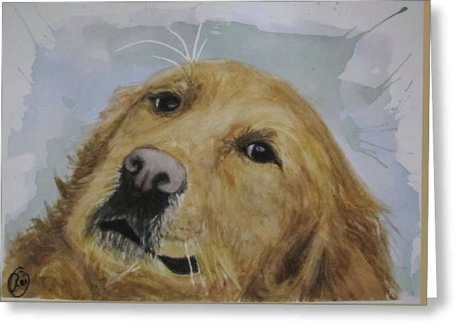 Old Golden Retriver Greeting Card by Annie Poitras