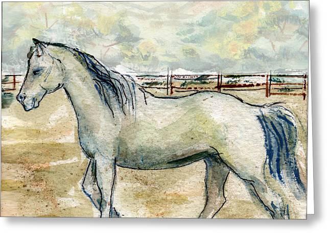 Old Gray Mare Greeting Card by Olga Kaczmar