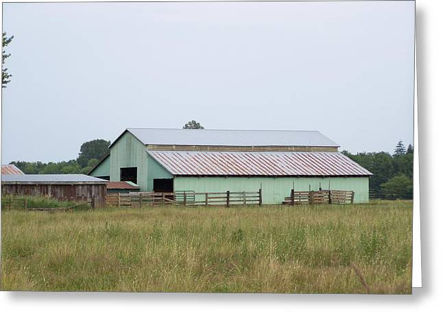 Old Green Barn    Washington State Greeting Card by Laurie Kidd