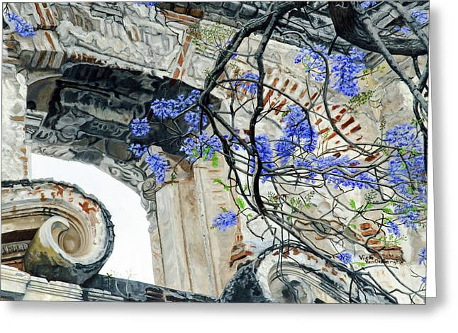 Old Growth Wisteria Greeting Card