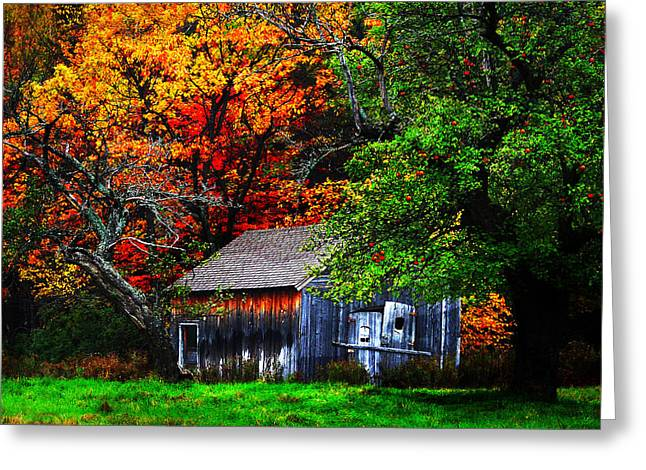 Old Homestead And The Apple Tree Greeting Card by Vicki Lea Eggen