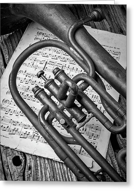Old Horn And Sheet Music Greeting Card
