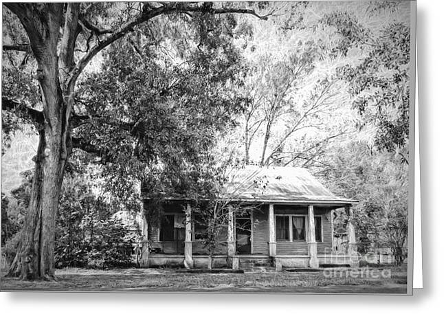 Old House And Tree Donaldsonville La Art Greeting Card
