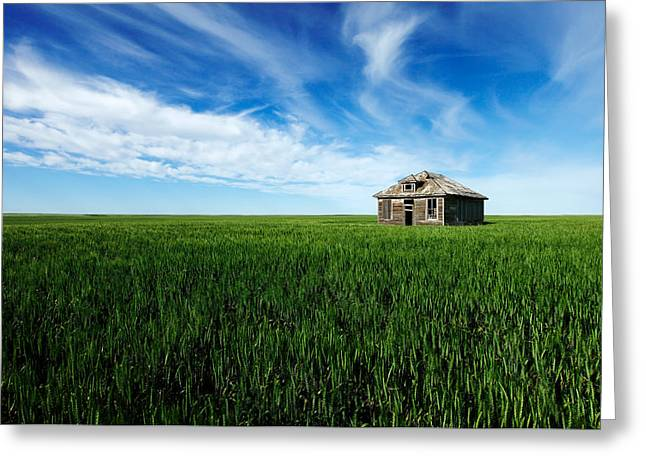 Old House On Amos Trail Greeting Card by Todd Klassy