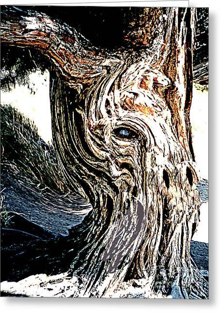 Greeting Card featuring the digital art Old Juniper Mule Tree by Merton Allen