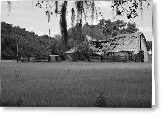Old Lockett Estate Fort Basinger Florida Greeting Card