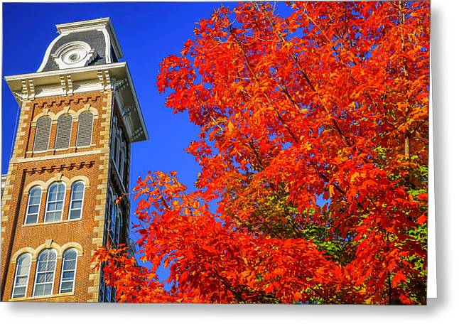 Old Main Maple Greeting Card by Damon Shaw