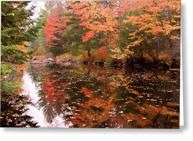 Greeting Card featuring the photograph Old Main Road Stream by Jeff Folger
