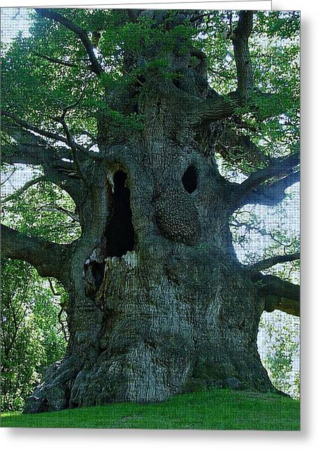 Old Man Tree Greeting Card