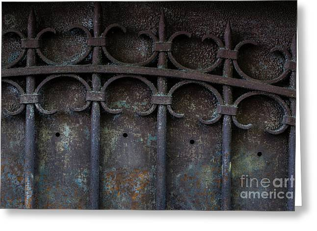 Old Metal Gate Greeting Card by Elena Elisseeva