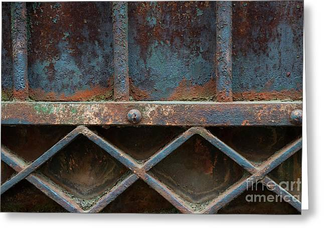 Greeting Card featuring the photograph Old Metal Gate Detail by Elena Elisseeva