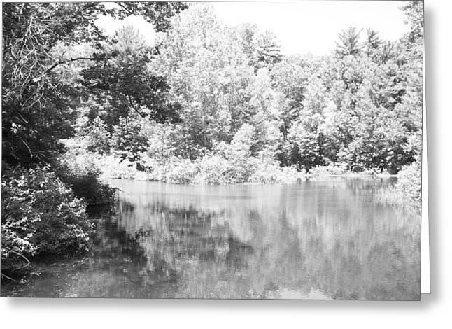 Old Michigan Creek Greeting Card by Derek Clark