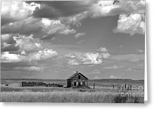 Old Montana Homestead Bw Greeting Card by Chalet Roome-Rigdon