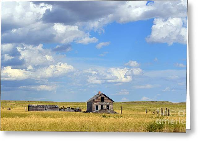 Old Montana Homestead Greeting Card by Chalet Roome-Rigdon