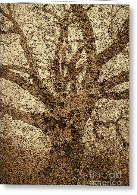 Old Oak And Textured Wall Montage Greeting Card by Dave Gordon
