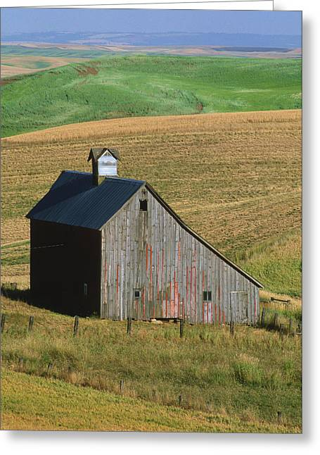 Old Palouse Barn Greeting Card by Sandra Bronstein