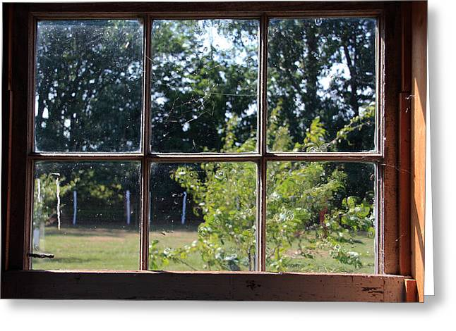Greeting Card featuring the photograph Old Pitted Glass Window by Joanne Coyle