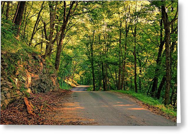 Greeting Card featuring the photograph Old Plank Road by Cricket Hackmann