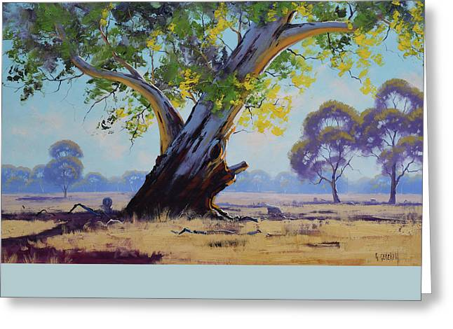 Old River Gum Australia Greeting Card by Graham Gercken