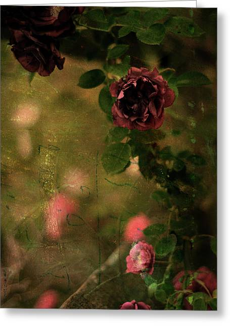 Old Roses Greeting Card by Rebecca Sherman