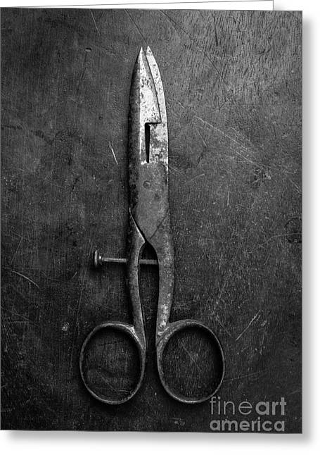 Old Scissors Greeting Card by Edward Fielding